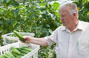агроном по защите растений