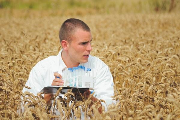 Господарству потрібні завідувач ферми, зоотехнік та агроном