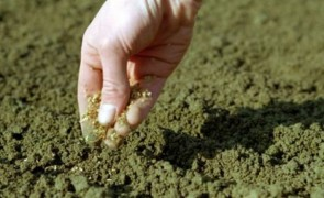 агроном-почвовед
